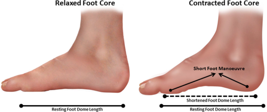 Short foot exercise